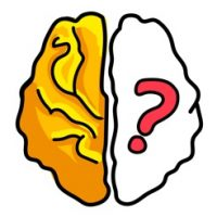 Brain Out Answers and Walkthrough